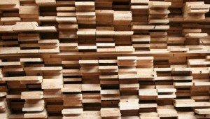 Stack of cut wood